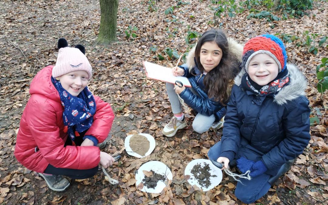 Nos élèves dans les bois!